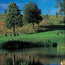 activities_golf
